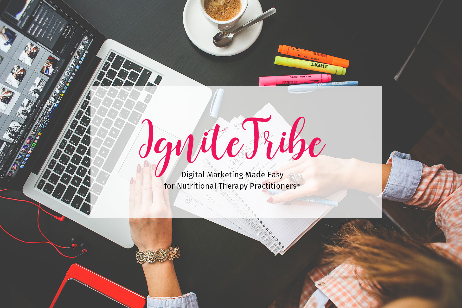 IgniteTribe: Digital Marketing Made Easy for Nutritional Therapy Practitioners Web Design